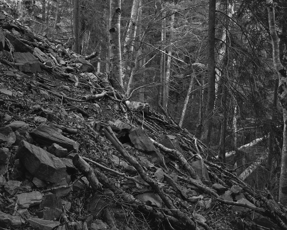 Scree in the forest, shot on unstable rock.